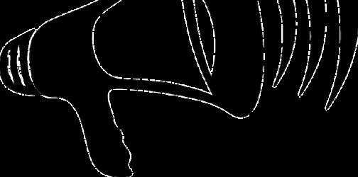Statut relais des Vosges du Nord suite à la Tempête Ciara (MàJ)